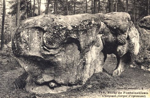 L'Éléphant de la forêt de Fontainebleau